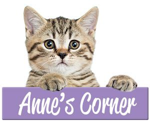 Anne's Corner